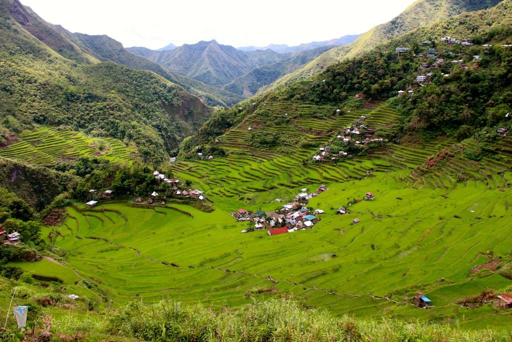 Batad et ses rizières