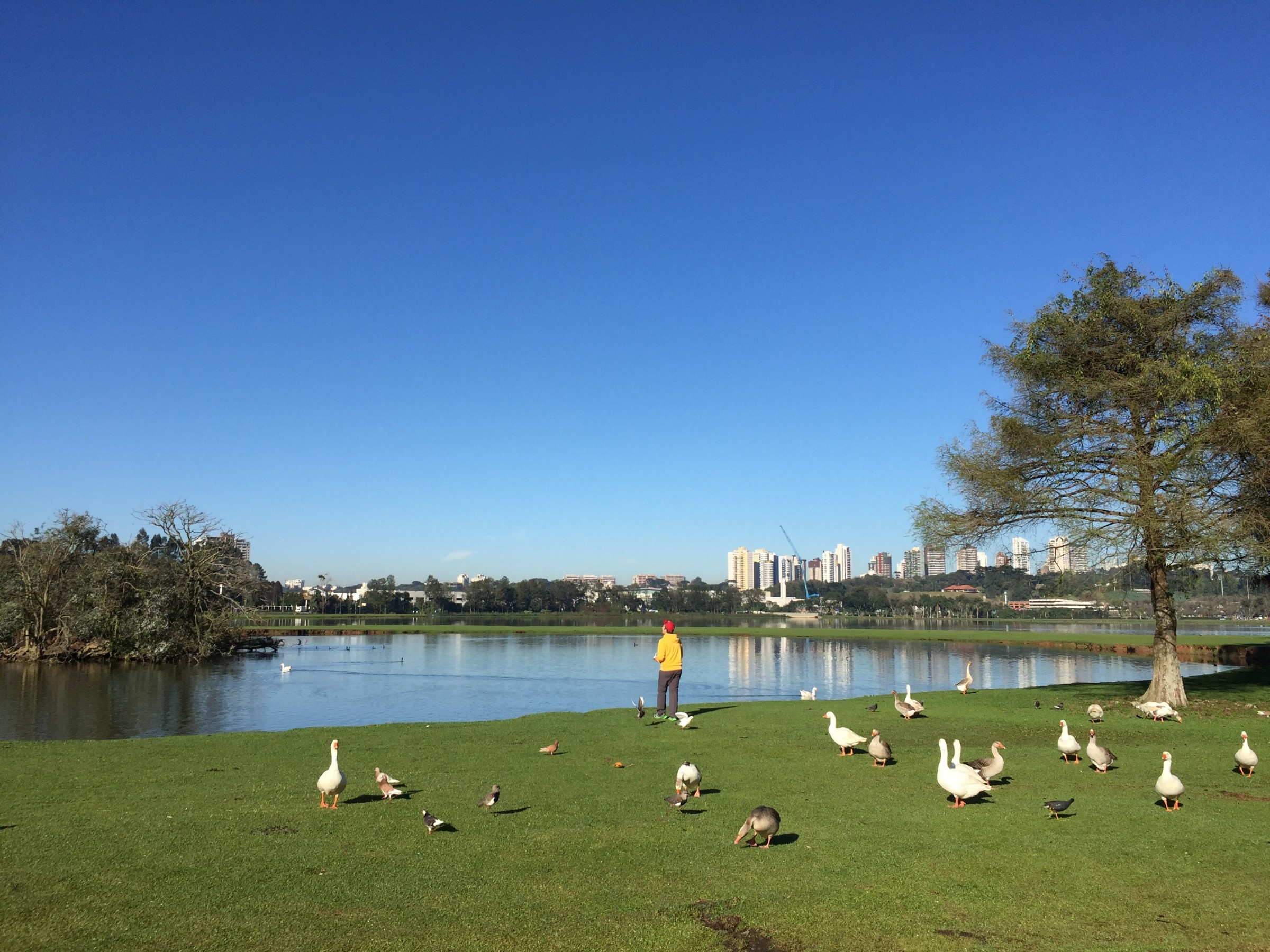 La parc Barigui