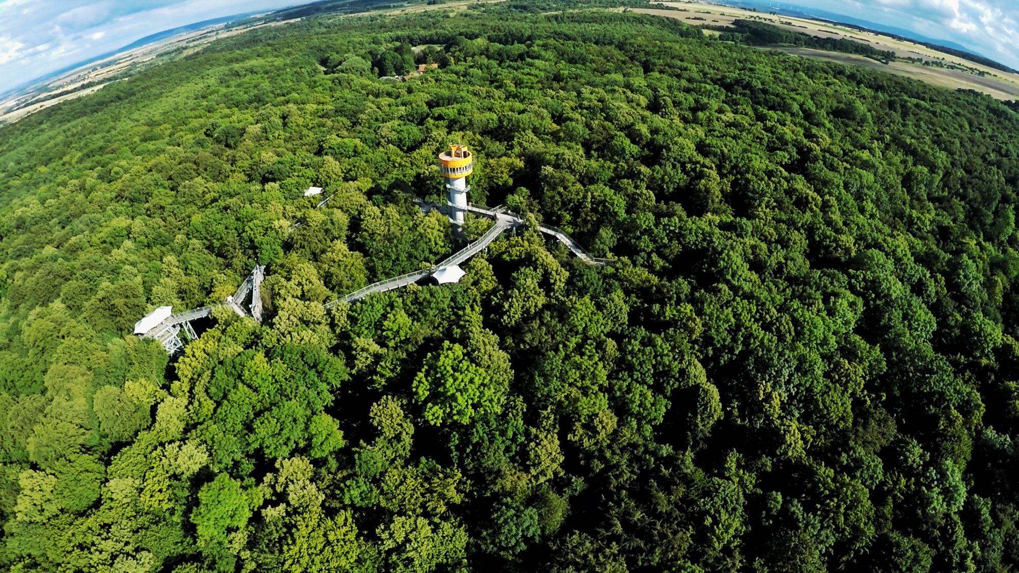 Parc National de Hainich